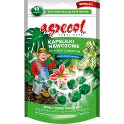 Kapsułki nawozowe do roślin domowych 14 szt. Agrec